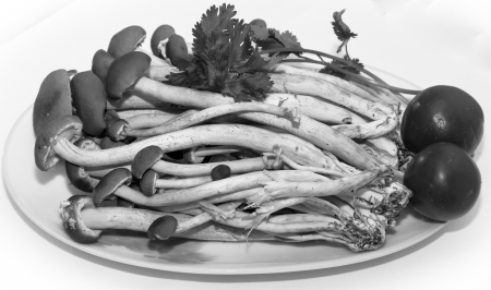 agrocybe cylindracea for soup Stock Photo