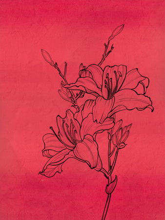 theme of nature, the flower--decoration, freehand sketching Stock Photo