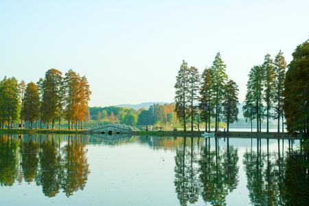 Wuhan East Lake plum landscape scenery view Stock Photo