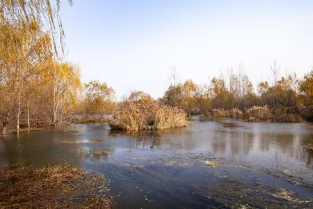 Yihe Wetland Park in Autumn