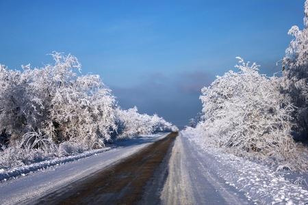 Winter landscape, the route photo