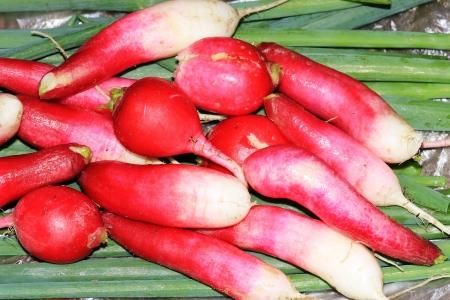Radishes and green onions closeup Stock Photo