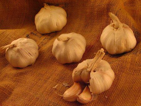 Garlics on a piece of gunny sack