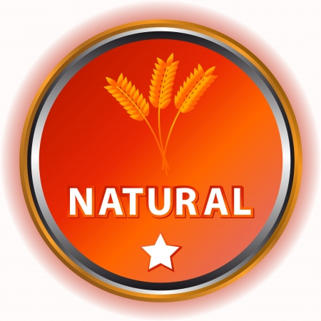 Natural icon with a symbol of an ear and a star Vector