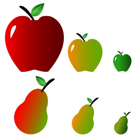 maturing: Concept from apples and pears of various extent of maturing Illustration