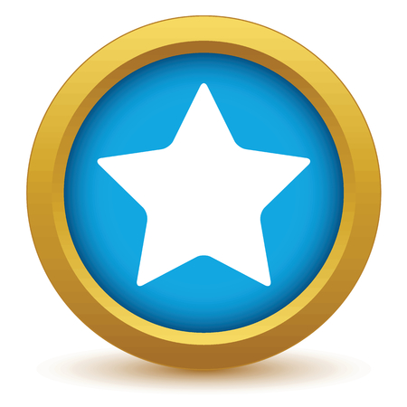 gold star: Gold star icon