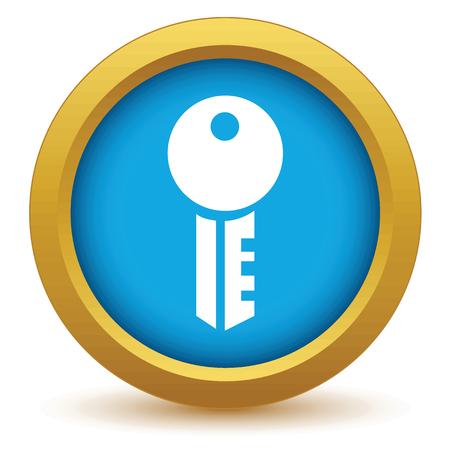gold key: Gold key icon