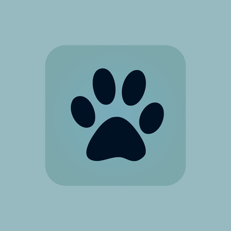 track pad: Image of paw print in square, on pale blue background Illustration