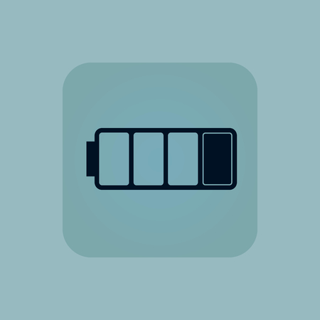 quarter: Image of one quarter full battery in square, on pale blue background
