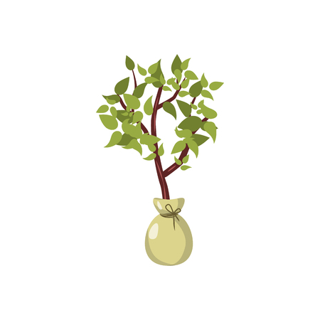 seedling: Seedling icon in cartoon style on a white background
