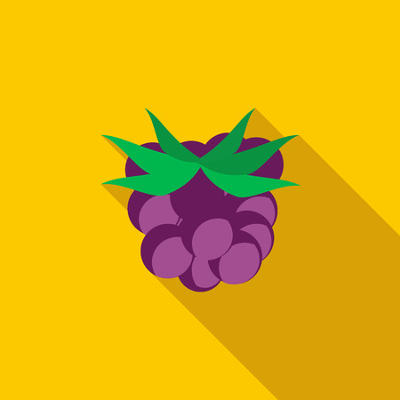 bramble: Blackberry icon in flat style with long shadow