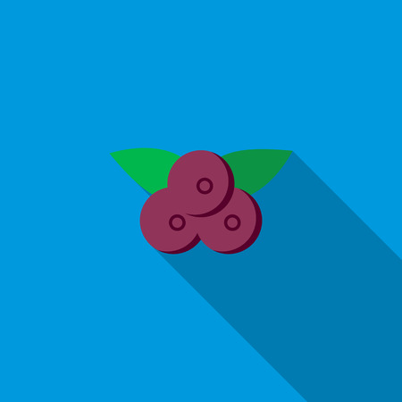 bilberry: Bilberry icon in flat style with long shadow