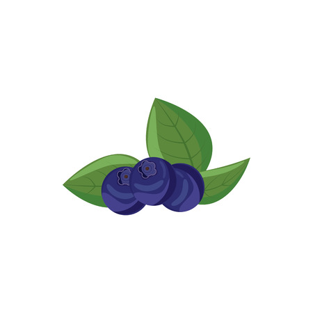 bilberries: Ripe bilberries with green leaves icon in cartoon style on a white background Illustration