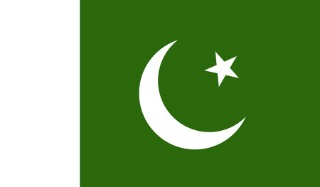 pakistan flag: Pakistan flag image for any design in simple style