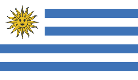 celebrities: Uruguay flag image for any design in simple style