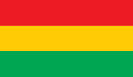 bandera bolivia: Bolivia flag image for any design in simple style Vectores