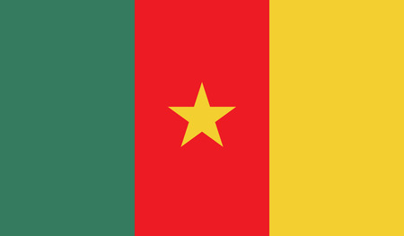 cameroon: Cameroon flag image for any design in simple style Illustration
