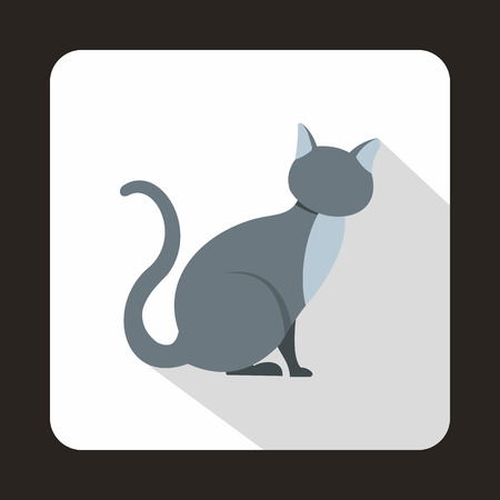 grey cat: Grey cat icon in flat style with long shadow. Pets symbol