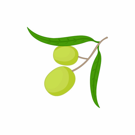 oily: Olives on branch with leaves icon in cartoon style on a white background