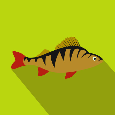 largemouth: Perch fish icon in flat style with long shadow. Sea and ocean symbol