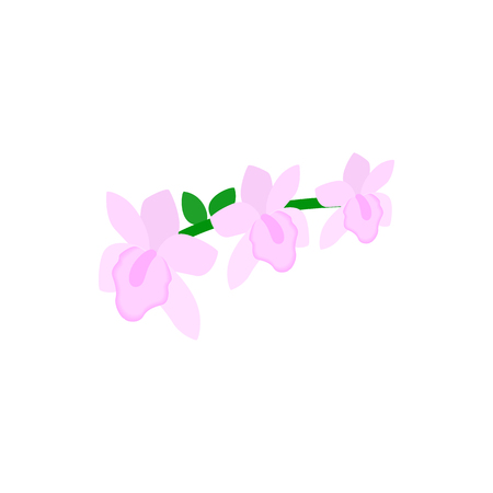 pink orchid: Pink orchid icon in isometric 3d style isolated on white background. Flowers symbol Illustration