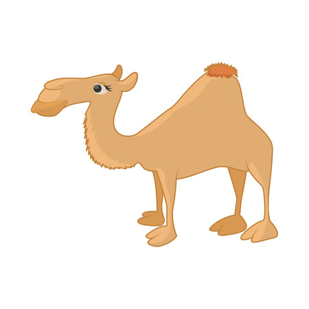 camel in desert: Camel icon in cartoon style on a white background