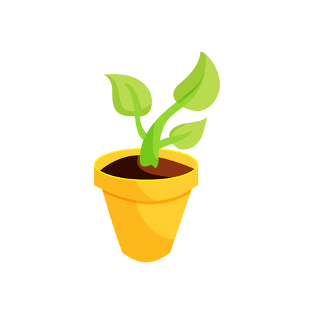 germinate: Green plant in a yellow pot icon in cartoon style on a white background