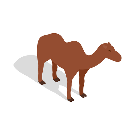 hump: Camel icon in isometric 3d style on a white background
