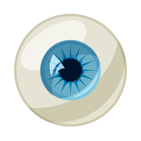 optic nerve: Human eye ball icon in cartoon style on a white background