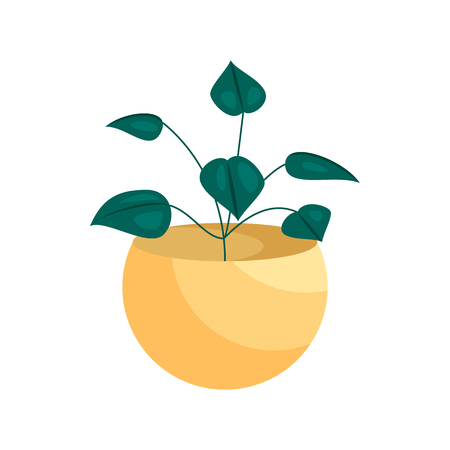 terra: House plant in a pot icon in cartoon style on a white background