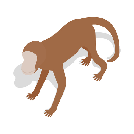cling: Monkey icon in isometric 3d style on a white background
