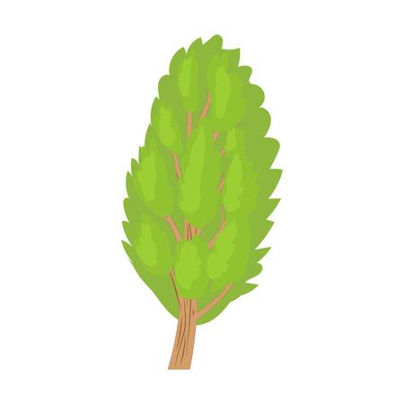 arbol alamo: icono del árbol de álamo en estilo de dibujos animados sobre un fondo blanco