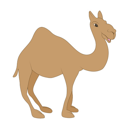 bedouin: Camel icon in cartoon style on a white background
