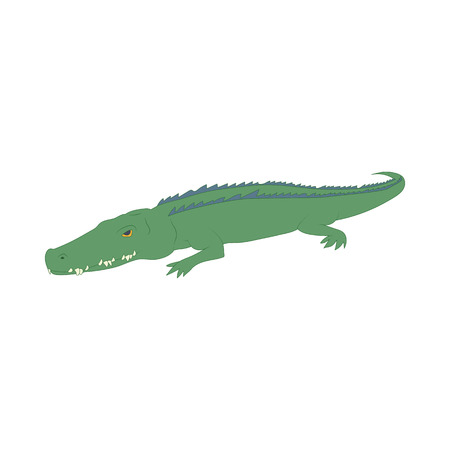 timid: Crocodile icon in cartoon style isolated on white background. Animals symbol