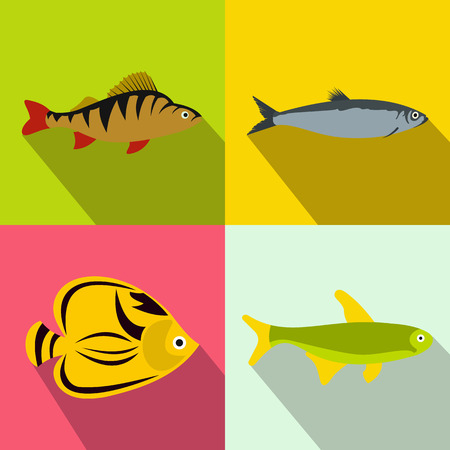 plunging: Fish banners set in flat style for any design