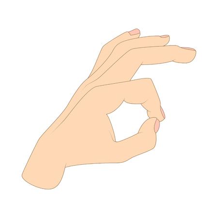 ok hand symbol: Ok hand symbol icon in cartoon style isolated on white background Illustration