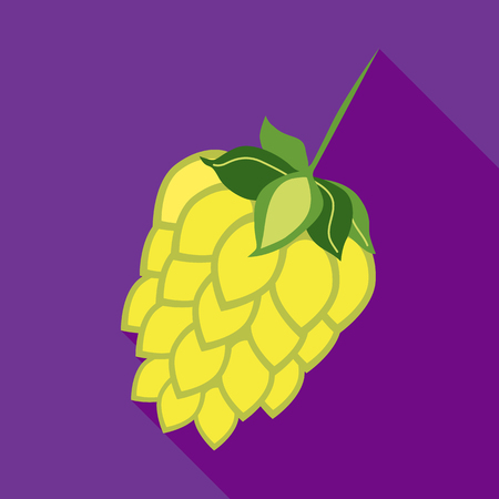 hop cone: Hop cone icon in flat style on a plum background