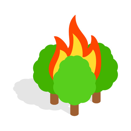 conflagration: Burning trees icon in isometric 3d style on a white background