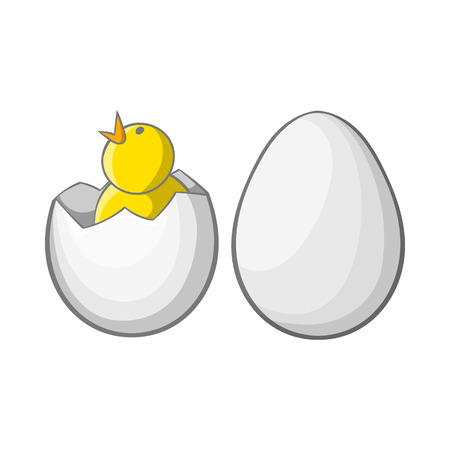 hatchling: Chick in egg icon in cartoon style isolated on white background. Animals symbol