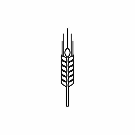 corn stalk: Stalk of ripe barley icon in outline style isolated vector illustration