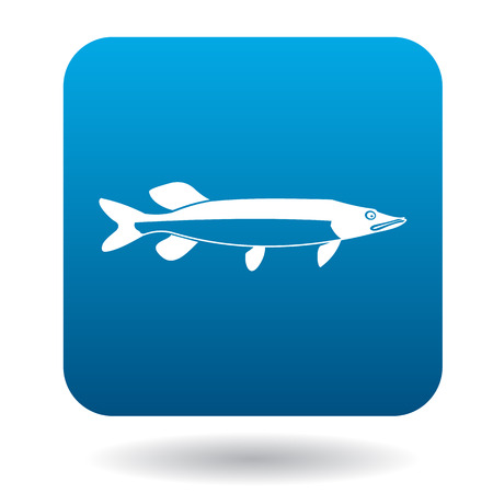 pike: Pike fish icon in simple style in blue square. Animals symbol