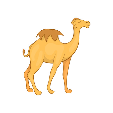humped: Camel icon in cartoon style isolated on white background. Animal symbol