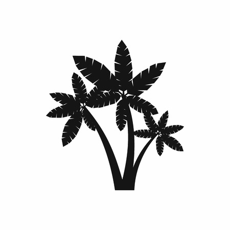 subtropical plants: Three palm trees icon in simple style isolated on white background. Flora symbol