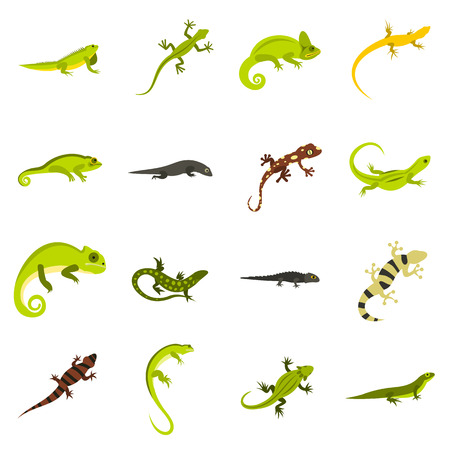newt: Flat lizard icons set. Universal lizard icons to use for web and mobile UI, set of basic lizard elements isolated vector illustration