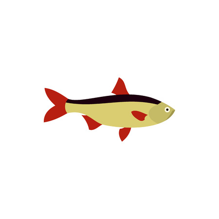 common carp: Rudd fish icon in flat style on a white background