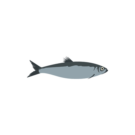 pilchard: Herring fish icon in flat style on a white background