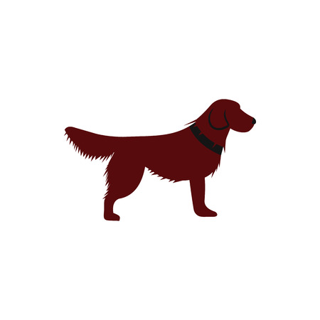 Irish setter icon in flat style on a white background