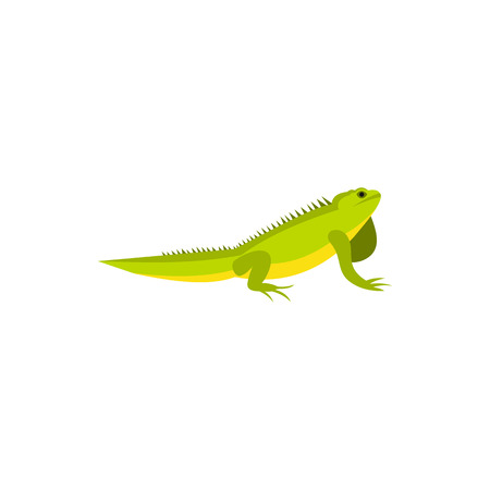 amphibia: Chameleon icon in flat style on a white background Illustration