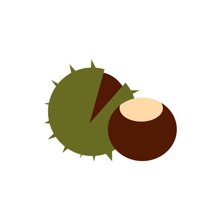 prickly fruit: Chestnut icon in flat style isolated on white background. Plant symbol