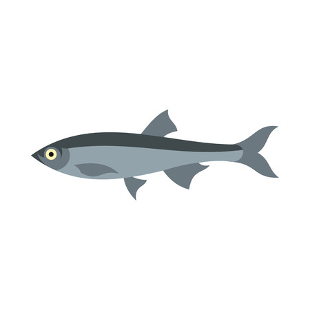 herring: Herring icon in flat style isolated on white background. Sea creatures symbol